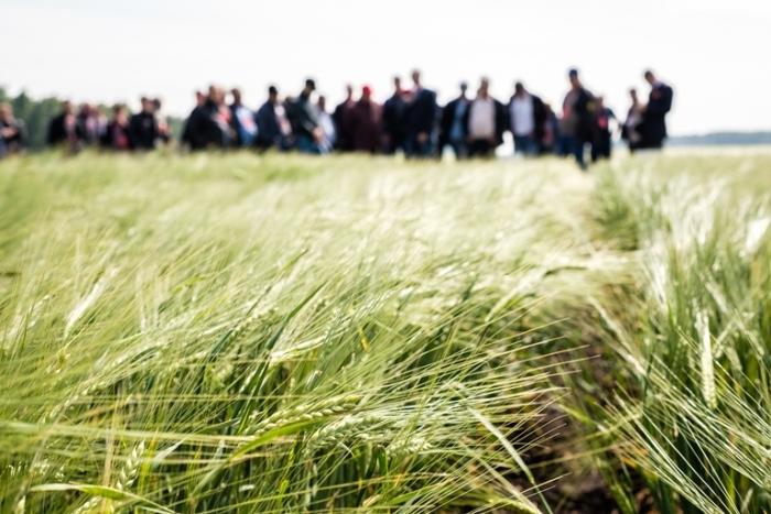 День поля в Омске