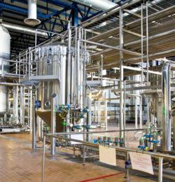 Количество пивоварен в Турции выросло до 5